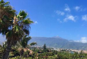 Im grünen Norden von Teneriffa, mit dem unvergleichlichen Blick auf den berühmten Berg El Teide.