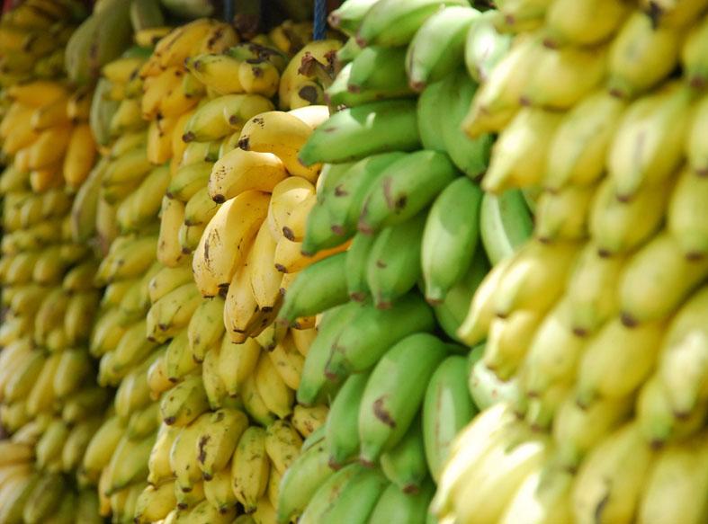 Warum die Banane krumm ist, beschäftigt mich am wenigstens... – Foto: unsplash.com