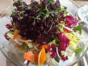 Der Asiasalat im Café/Restaurant Leutbühel aus Blattsalaten, rohem Gemüse, Mango und Sprossen und einem Sesam-Koriander-Dressing hat mich sehr überzeugt.
