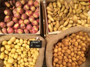 Kartoffeln gibt es in vielen verschiedenen Sorten, Farben, Geschmacksrichtungen . Es lohnt sich, auch mal exotisch anmutende Sorten auszuprobieren. Sehr dekorativ ist z.B. Kartoffelsalat aus blauen Knollen.